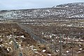 Deer fence across Glen Derby - geograph.org.uk - 1195062.jpg