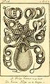 Denys Montforts allgemeine und besondere Naturgeschichte der Weichwürmer - Mollusques, als Fortsetzung der Bussonschen Naturgeschichte (1803) (20671780898).jpg