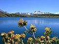 Der Grimselpass in den Schweizer Alpen.jpg