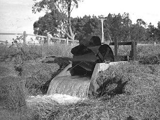 1910 in Australia - Dethridge wheel in 1936 – Victoria Australia