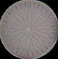 Diatom 2.png