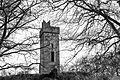 Digital Eye–2015–Castletown Motte.jpg