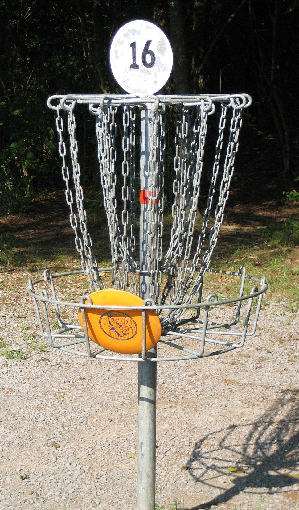 Disc golf in basket