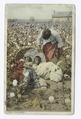 Discovered, In the Land of King Cotton (Cotton Field) (NYPL b12647398-68806).tiff