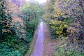 Disused Railway Track, Knowle, Devon - geograph.org.uk - 1039485.jpg