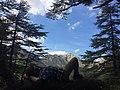 Djurdjura national park algeria.jpg