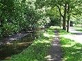 Dock Feeder Canal, Bute Park - geograph.org.uk - 1462094.jpg