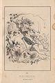 Dodens Engel 1851 0011.jpg