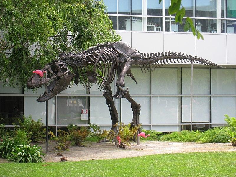 Stan, Google's T-Rex