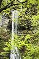 Double Falls, Waterfall, Oregon (31900041383).jpg