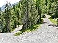 Down to Lago di San Giacomo - panoramio.jpg