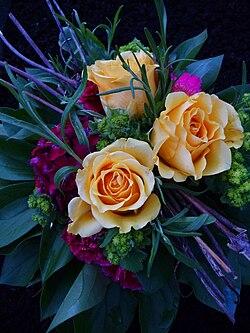 Drei gelbe Rosen.JPG