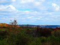 Driftless Area - panoramio (27).jpg