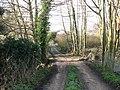 Driveway to Robin Farm - geograph.org.uk - 1136956.jpg