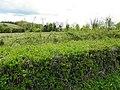 Drumgorry Townland - geograph.org.uk - 1865388.jpg