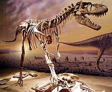 Esqueleto de Albertossauro no Royal Tyrrell Museum em Alberta, Canadá.