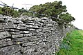 Dry stone wall, Bronkham Hill - geograph.org.uk - 1034614.jpg