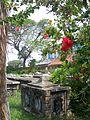 Dutch cemetery - Paul Munhoven.JPG