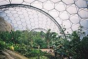 Inside the tropical Biome