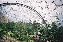 Eden project tropical biome.jpg