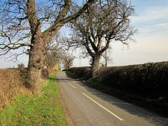 Edgerley Lane near Churton - geograph.org.uk - 2829005.jpg