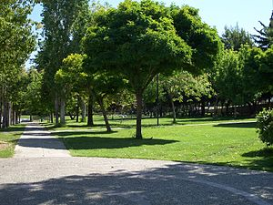 Aigaleo - The municipal park of Egaleo, Athens