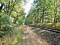 Eisenbahnstrecke in der Nähe der ehemalingen innerdeutschen Grenze - panoramio.jpg