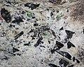 Emeralds-garnets-tourmaline in pegmatitic granite (Crabtree Pegmatite, Devonian; Crabtree Mountain, Mitchell County, North Carolina, USA) 6 (24151201927).jpg