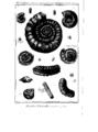Encyclopedie volume 5-169.png