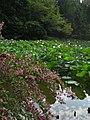Enjo-ji Garden 01.jpg