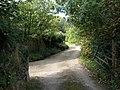 Entrance to Kigbeare - geograph.org.uk - 982725.jpg