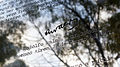 Espacio Memoria y DDHH - 'Carta abierta' de Rodolfo Walsh 3.jpg