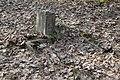 Evangelical-Augsburg Cemetery Marki 4.JPG