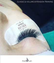 fb60159d885 Eyelash extensions - Wikipedia