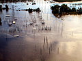 FEMA - 100 - Photograph by Dave Gatley taken on 09-22-1999 in North Carolina.jpg