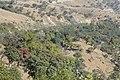 Falam, Myanmar (Burma) - panoramio (45).jpg