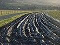 Farmland, Chalmerston - geograph.org.uk - 370347.jpg