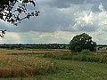 Farmland opposite Coveney Nursery, Ongar Road - geograph.org.uk - 207667.jpg