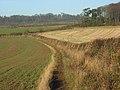 Farmland with bridleway, Ewelme - geograph.org.uk - 1118889.jpg