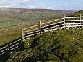 Fence at Satron Low Walls - geograph.org.uk - 1022610.jpg