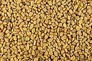 Fenugreek seeds close-up