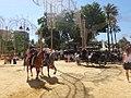 Feria del Caballo 2014 – Jerez de la Frontera – DSC07351.JPG
