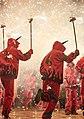 Festa Major Sant Antoni de Vila-seca 04.jpg