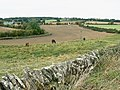 Field boundary, east of Bridewell Farm, East End, Witney - geograph.org.uk - 1515003.jpg