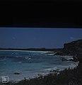 Fine reef off windy North coast. Little San Salvador. (24998817608).jpg