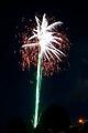 Fireworks DSC 0572 (6848275146).jpg