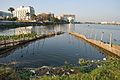 Fish Trap - Bidhannagar 7817.JPG
