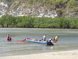 Panga (boat) - Image: Fishermen at Moya beach
