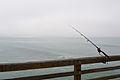 Fishing Pole at Oceanside Pier.jpg