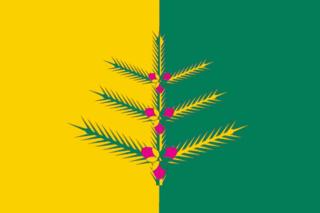 Флаг Немского района